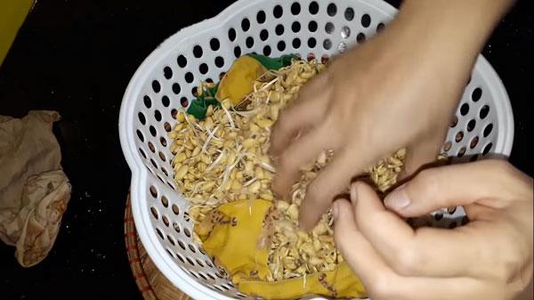 cách làm mầm đậu nành, cách làm bột mầm đậu nành tại nhà, cách làm mầm đậu nành nguyên xơ tại nhà, cách làm mầm đậu nành để uống, cách làm mầm đậu nành khô tại nhà, cách tự làm mầm đậu nành tại nhà, cách làm tinh bột mầm đậu nành tại nhà, cách làm mầm đậu nành don gian, cách làm tinh chất mầm đậu nành tại nhà, cách làm mầm đậu nành tại nhà, cách làm bột mầm đậu nành khô, hướng dẫn làm mầm đậu nành, mầm đậu nành làm như thế nào, mầm đậu nành cách làm, quy trình làm mầm đậu nành, làm mầm đậu nành bột, hướng dẫn làm mầm đậu nành tại nhà, nguyên liệu làm mầm đậu nành, quy trình làm bột mầm đậu nành, mầm đậu nành làm thế nào, làm mầm đậu nành uống, tự làm mầm đậu nành uống