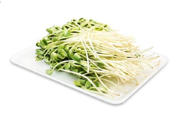 cách làm rau mầm đậu nành tại nhà