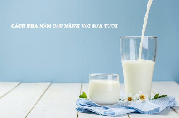 cách pha mầm đậu nành với sữa tươi, uống mầm đậu nành với sữa tươi