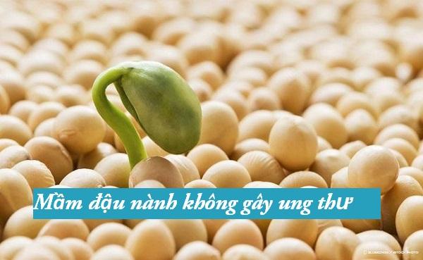 dau nanh co tot khong, đậu nành rang có tốt không, mầm đậu nành có thực sự tốt, mầm đậu nành có tốt, mầm đậu nành có tốt không, mầm đậu nành có tốt ko, mầm đậu nành mua ở đâu tốt, mầm đậu nành tốt không, mầm đậu nành tự làm có tốt không, mầm đậu nành uống có tốt k, mầm đậu nành uống có tốt không, mầm đậu nành uống tốt không, sử dụng mầm đậu nành có tốt không, uống bột đậu nành có tốt không, uống đậu nành có tốt không, uống đậu nành mỗi ngày, uống đậu nành nhiều có tốt không, uống mầm đậu nành có tốt không, viên uống mầm đậu nành có tốt không, vỏ đậu nành có tốt không, tác hại của mầm đậu nành, tác hại của đậu nành, tác hại của đậu nành biến đổi gen, tác hại của đậu nành đối với nam giới, tác hại của đậu tương, tác hại của nước đậu nành, tác hại của tinh chất mầm đậu nành,