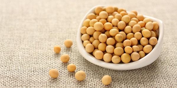 mầm đậu nành là gì, mầm đậu nành nguyên xơ là gì, mầm đậu tương là gì, bột mầm đậu nành là gì, mầm đậu nành nguyên sơ là gì, tinh chất mầm đậu nành là gì, mầm đậu nành là gi, mầm đậu nành là cái gì, tinh mầm đậu nành là gì,