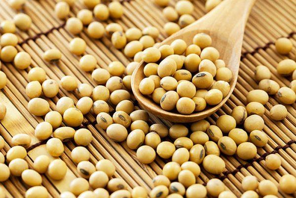 cách uống mầm đậu nành tăng vòng 1,cách pha mầm đậu nành tăng vòng 1,cách uống mầm đậu nành tăng vòng 1,cách sử dụng mầm đậu nành tăng vòng 1,cách dùng mầm đậu nành tăng vòng 1,hướng dẫn uống mầm đậu nành tăng vòng 1,cách uống mầm đậu nành tăng size vòng 1,cách dùng mầm đậu nành để tăng vòng 1,cách uống mầm đậu nành giúp tăng vòng 1,cách uống bột mầm đậu nành tăng vòng 1