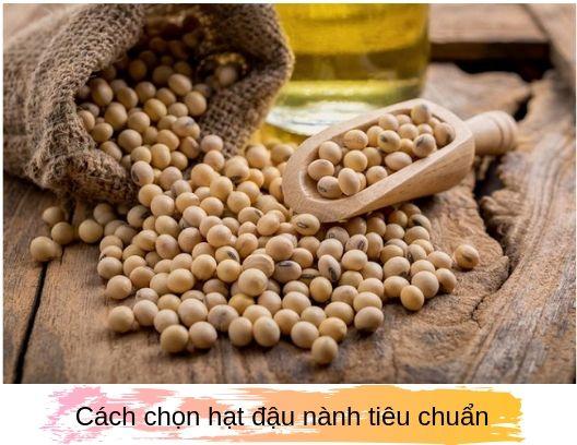 cách chọn hạt đậu nành ngon, hướng dẫn chọn hạt đậu nành ngon, cách chọn đậu nành ngon, cách chọn đậu nành, cách chọn đậu tương ngon, cách chọn mầm đậu nành