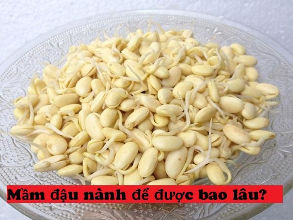 mầm đậu nành sau khi chế biến để được bao lâu, mầm đậu nành để được bao lâu, bột mầm đậu nành để được bao lâu,