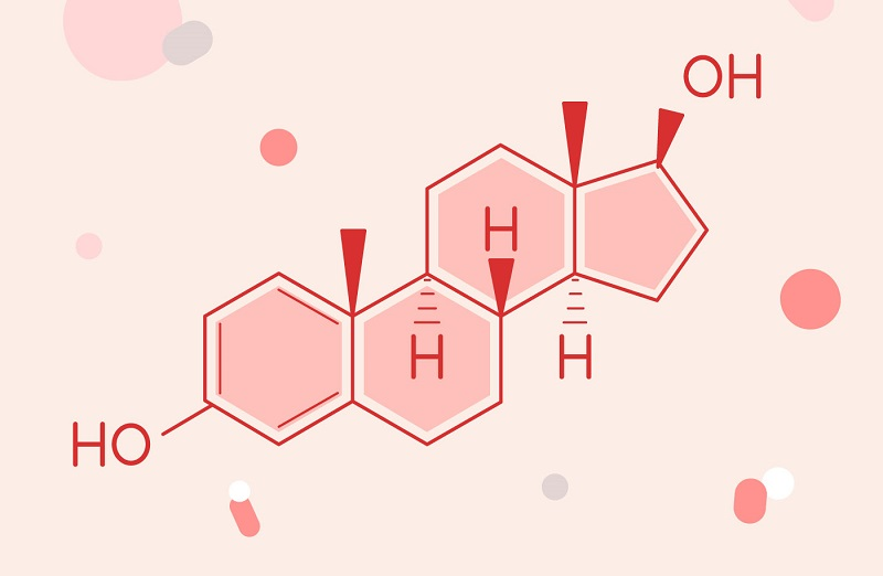 hormone estrogen là gì, hormone estrogen có tác dụng gì, hoocmon estrogen có tác dụng gì, estrogen tác dụng, estrogen có tác dụng gì, estrogen là gì, tác dụng của estrogen, ,