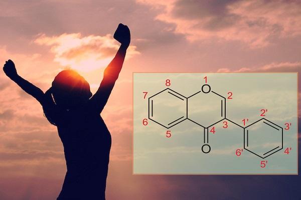 Equol chuyển hóa từ Daidzein Isoflavon có lợi cho sức khỏe con người