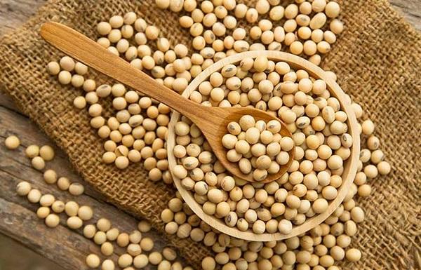 isoflavones có trong thực phẩm nào, estrogen thực vật, thực phẩm giàu isoflavone, thực phẩm có chứa isoflavones, thực phẩm bổ sung isoflavone