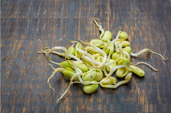 Lượng calo trong mầm đậu nành là bao nhiêu chị em nhất định phải biết để tránh bị tăng cân không kiểm soát
