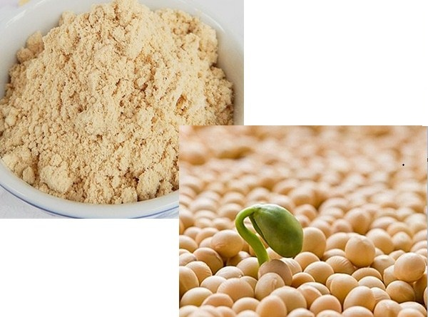 mầm đậu nành khác bột đậu nành như thế nào, mầm đậu nành khác bột đậu nành, mầm đậu nành và bột đậu nành, mầm đậu nành khác gì bột đậu nành, bột đậu nành hay mầm đậu nành tốt hơn, sự khác nhau giữa mầm đậu nành và bột đậu nành,