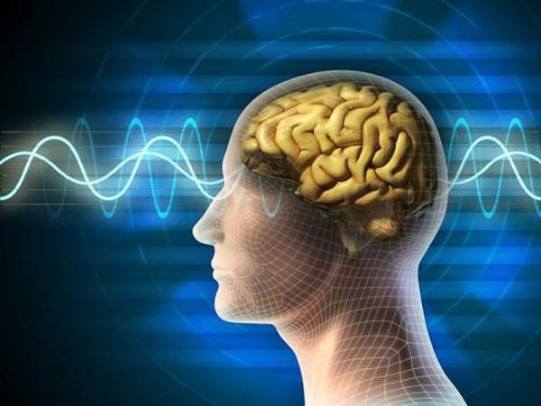 Nghiên cứu khoa học chứng minh ăn mầm đậu nành tăng trí nhớ | Bạn có biết?