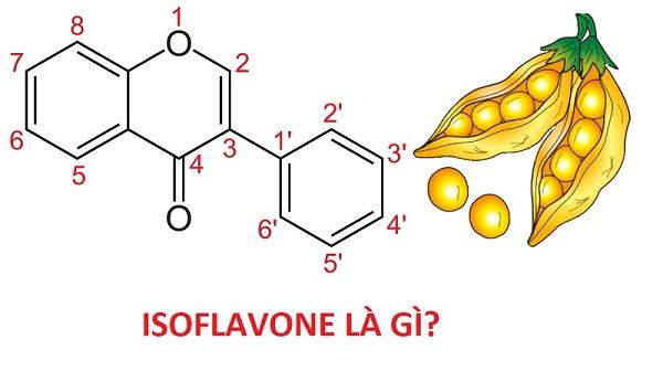 Isoflavon có tác dụng gì đối với sức khỏe phụ nữ, bạn đã biết chưa?