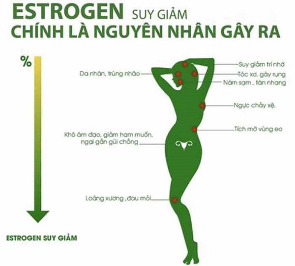 nguyên nhân suy giảm nội tiết tố nữ, nguyên nhân gây suy giảm nội tiết tố nữ