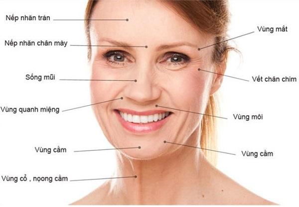 dấu hiệu của làn da bị lão hóa, dấu hiệu lão hóa da mặt, dấu hiệu lão hóa da sớm, dấu hiệu lão hóa da là gì, 7 dấu hiệu lão hóa da, các dấu hiệu lão hóa da, những dấu hiệu lão hóa da, dấu hiệu lão hóa sớm, dấu hiệu da lão hóa sớm, dấu hiệu lão hóa da mặt, dấu hiệu lão hóa da sớm, dấu hiệu của làn da bị lão hóa sớm, dấu hiệu của da bị lão hóa, dấu hiệu da bị lão hóa sớm, dấu hiệu da mặt bị lão hoá
