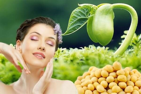 cách uống mầm đậu nành hiệu quả nhất, cách uống mầm đậu nành tăng vòng 1, cách uống mầm đậu nành giảm cân, cách uống mầm đậu nành tăng cân, cách uống mầm đậu nành để tăng cân, cách uống mầm đậu nành giảm mỡ bụng, cách dùng mầm đậu nành tăng vòng 1, cách uống mầm đậu nành đẹp da, cách dùng mầm đậu nành hiệu quả,