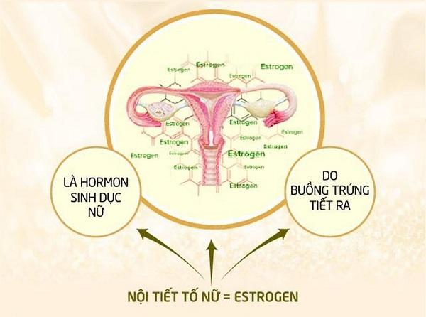 Vì sao có thời kỳ tiền mãn kinh ở nữ giới, sức khỏe phụ nữ tiền mãn kinh, tiền mãn kinh có triệu chứng gì, tiền mãn kinh nên ăn gì, phụ nữ bao nhiêu tuổi thì hết trứng, bệnh sau khi mãn kin, mãn kinh là gì, tiền mãn kinh phải làm sao, khám tiền mãn kinh ở đâu
