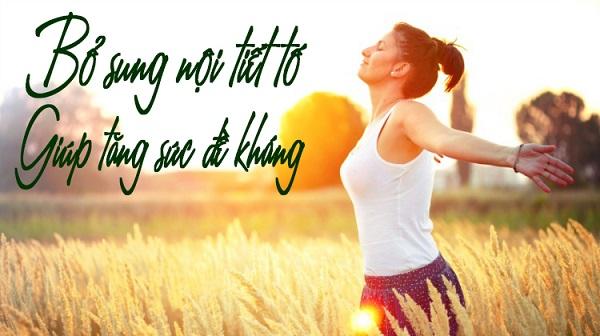 Bổ sung nội tiết tố nữ giúp tăng sức đề kháng