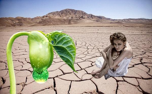 uống gì để giảm khô hạn