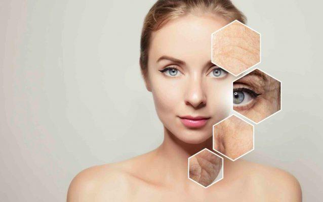 Các lớp da từ trong ra ngoài đều chịu ảnh hưởng của quá trình lão hóa da tự nhiên